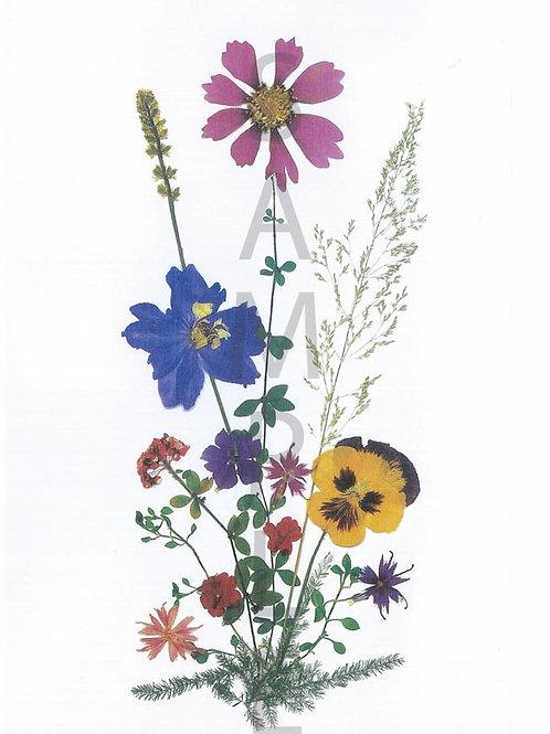 Erika Flower Print