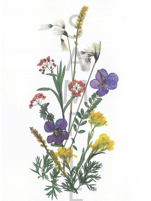 Johanna Flower Print