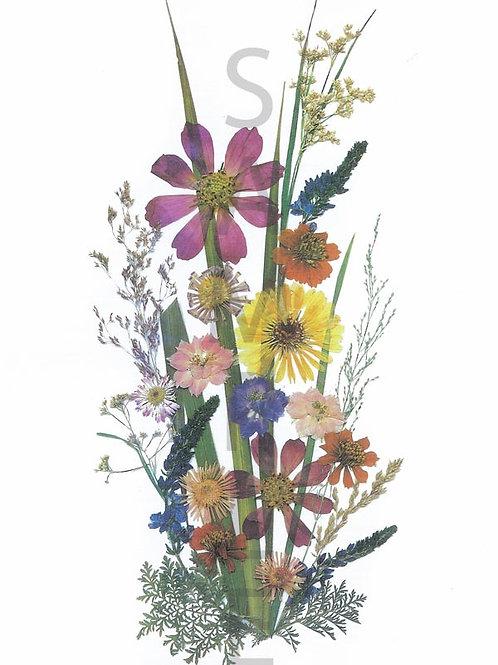 Ilse Flower Print