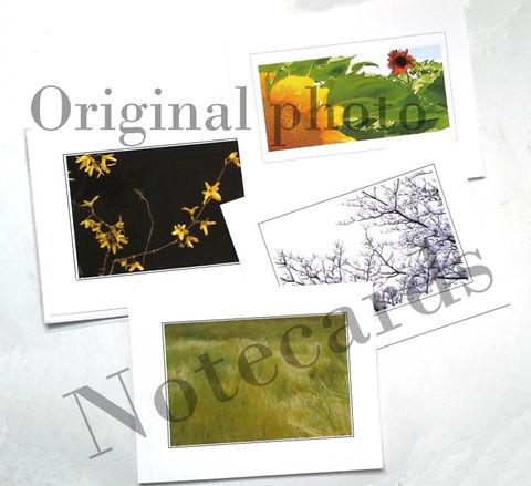 SK_cards20928_145127.22.jpg