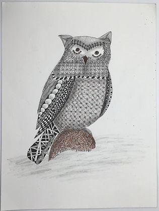 Profile - Owl