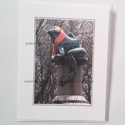 Frog in Snow- 6 notecards by Stan Kaplan