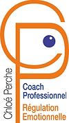 logo fond blanc avec cp .png