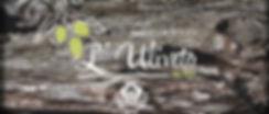 L'Uliveto