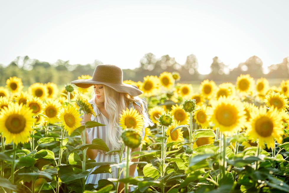 Sunflower senior picture photography germantown TN