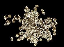 Gold-Splash-08.png