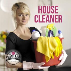 1Jan_15 House cleaner