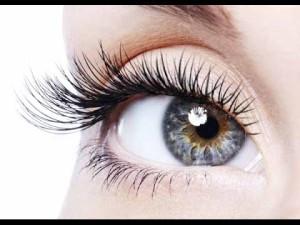 gray eye long lashes