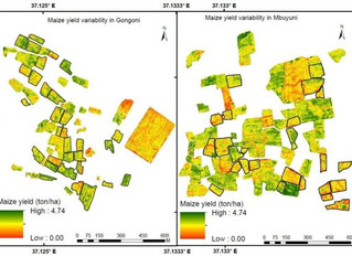 Mapping in-field spatial maize yield variability in Tanzania using very fine spatial resolution imag