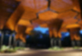 orquideorama-head.jpg