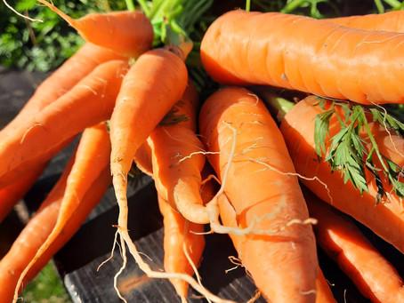 Recette de fanes de carottes