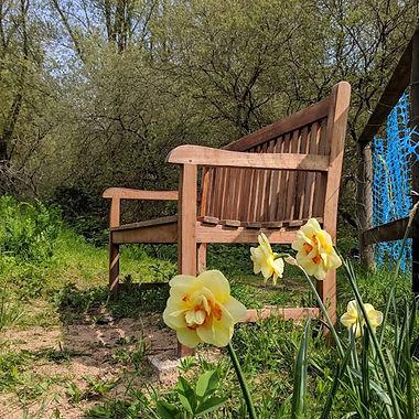 bobs bench.jpg