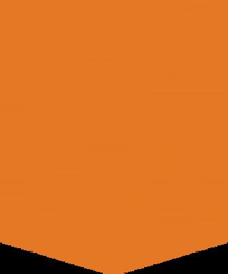 orange banner 1.png