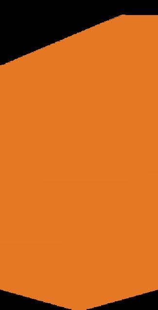 orange banner 2.png