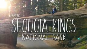 EXPLORE: Sequoia Kings National Park