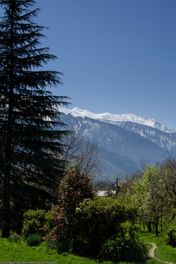 View of the Himalayas.