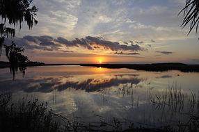 Savannah sunset tour marsh