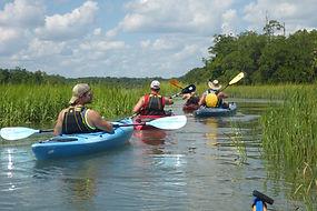 kayak tour Savannah