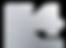 II4 logo silver _edited.png