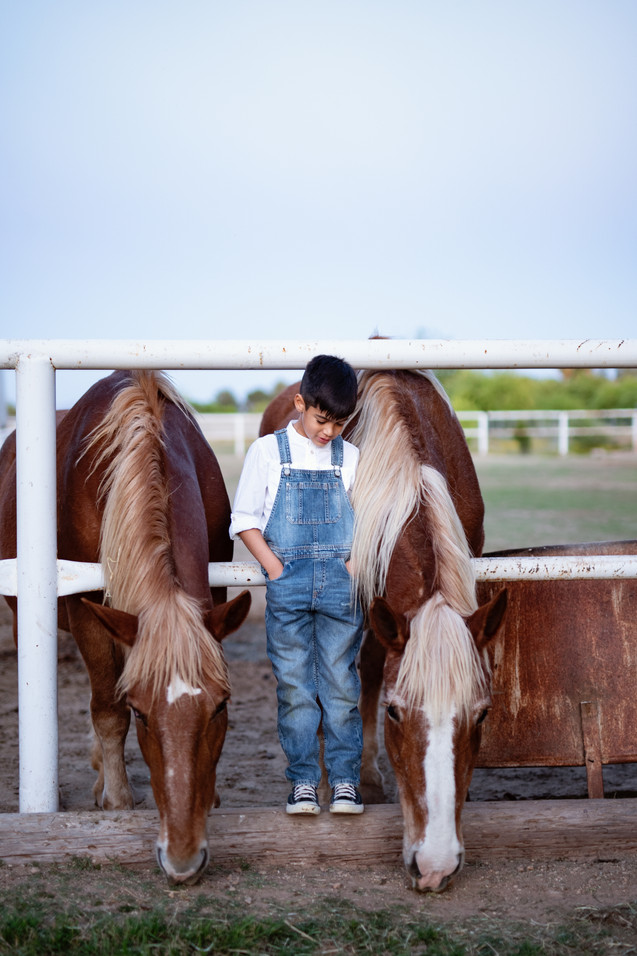 little boy with horse in phoenix arizona