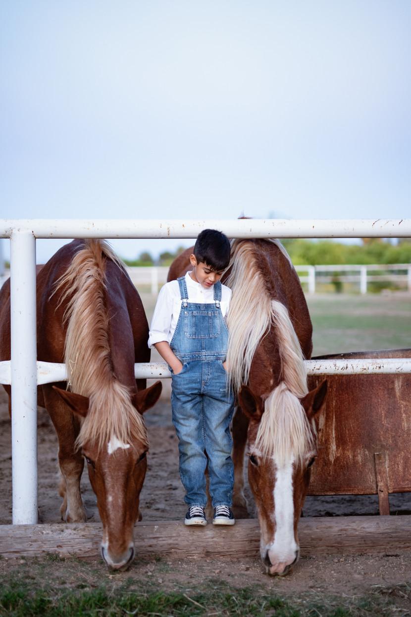 little boy with horse in phoenix arizona