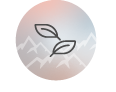 eco_icon.png