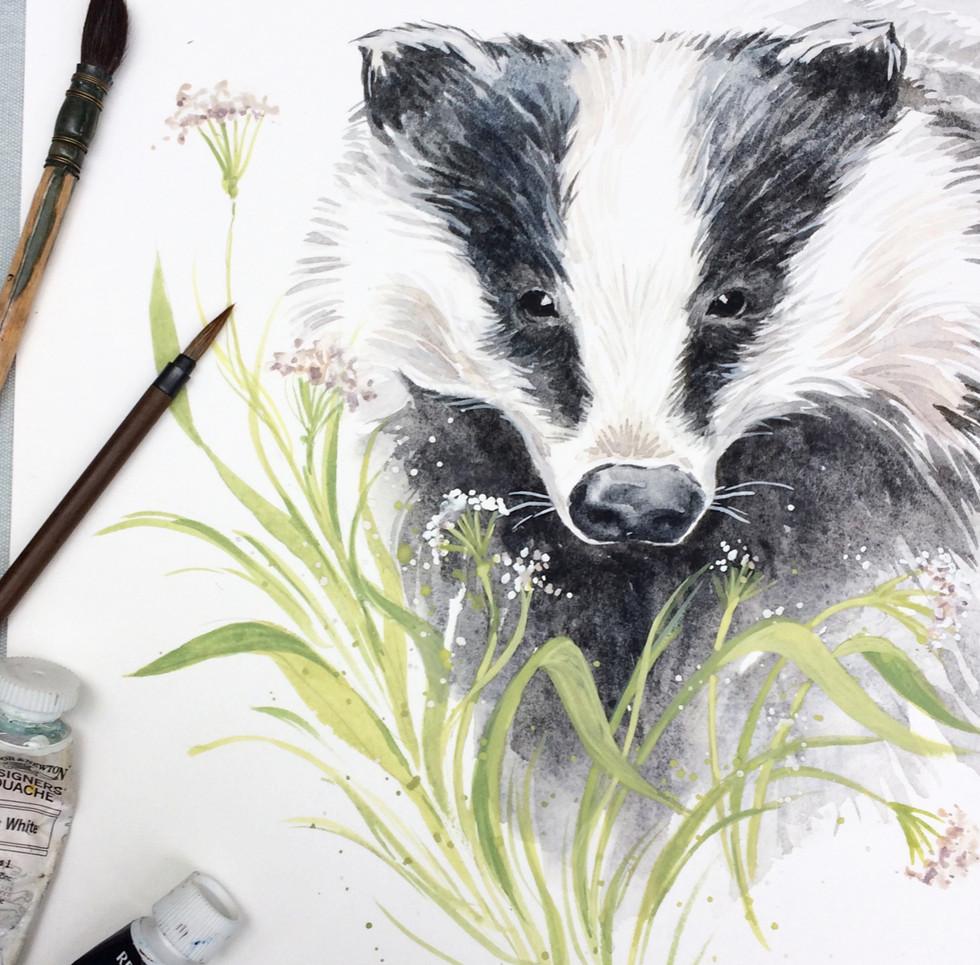 Badger Watercolour