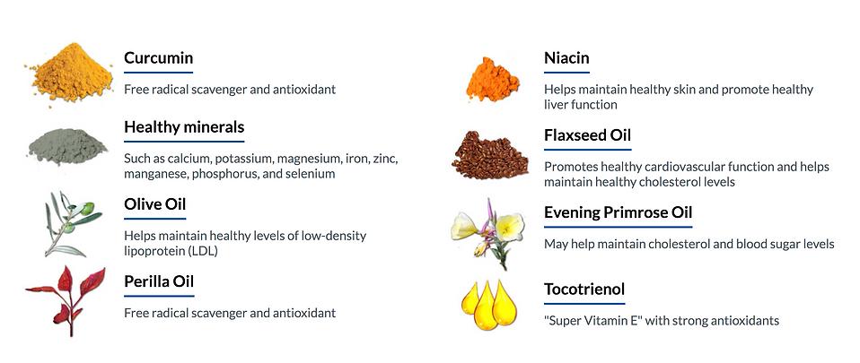 Ukon Ingredients.png