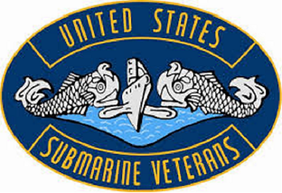 USSVI logo link to homepage
