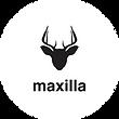 maxilla.png