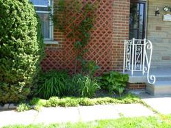 Front Patio Face Life & Garden