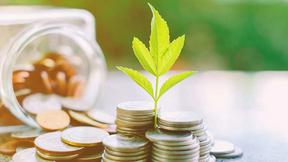 Minam apoya a la FEPCMAC en el marco del protocolo verde para realizar estudio de biocréditos