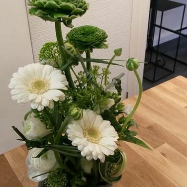 Composition blanche et verte