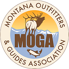 MT Outfitters Logo.png