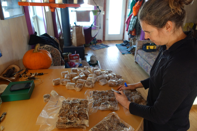 Gearing up for a Winter Climb: Tasty Energy Bars