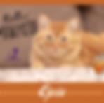 Opie Cat of Oct.png