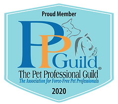 ppg-member-badge-2020-blue-with-tag.png