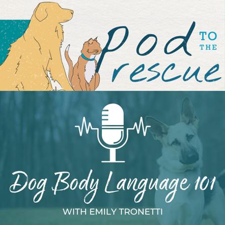 dog-body-language-101.png
