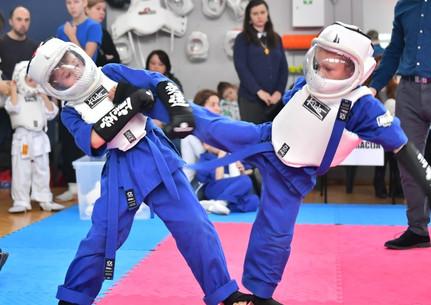 Avangard karate