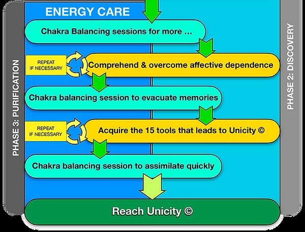 """L'Unicité"" or Unicity Plan Phase Three Purification Mapmind"