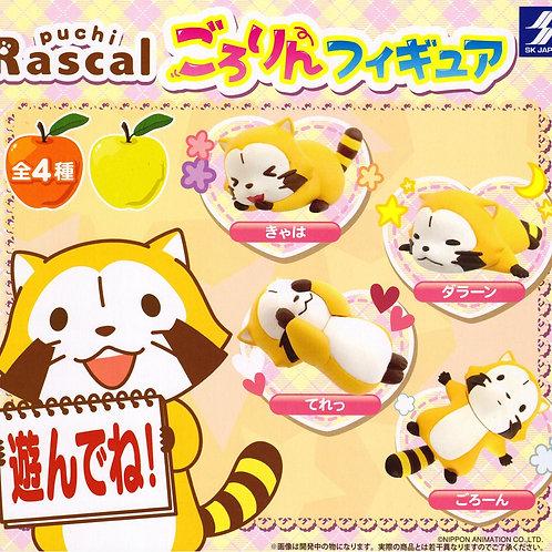 Rascal Raccoon | Araiguma Rasukaru