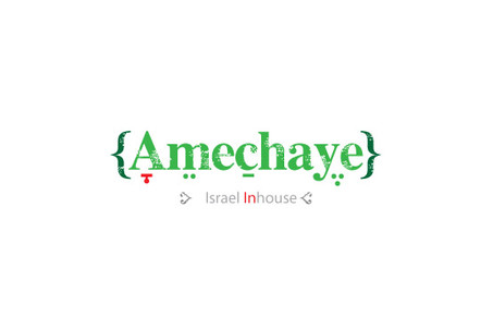 Ameechaye