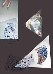RPR_Ladyfish_A4.jpg