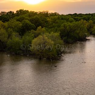 North Texas Expositories-5.jpg