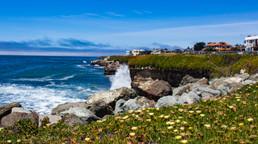Santa Cruz_02.jpg