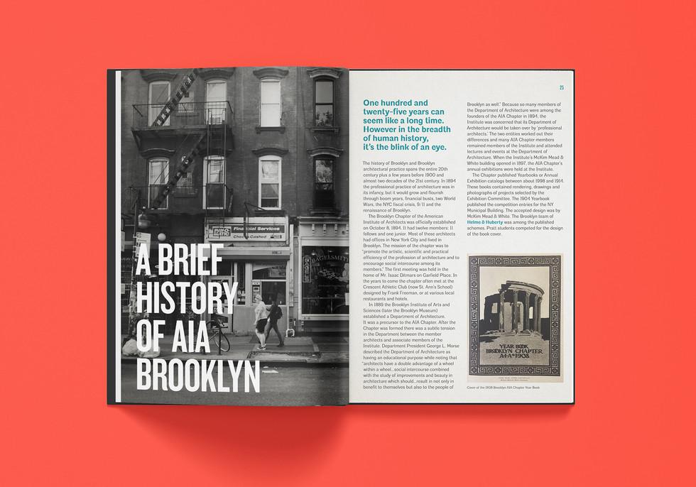AIA Brooklyn Anniversary Gala Brochure