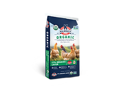 Organic Layer.png