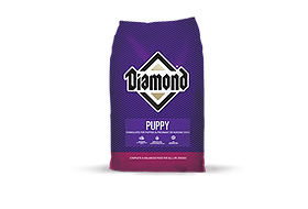Diamond Puppy.png