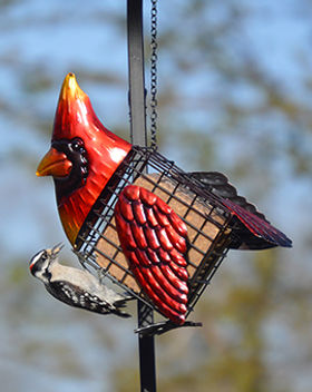 Cardinal Suet Feeder.jpg