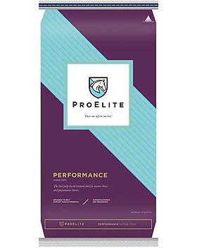 PE_Performance.jpg